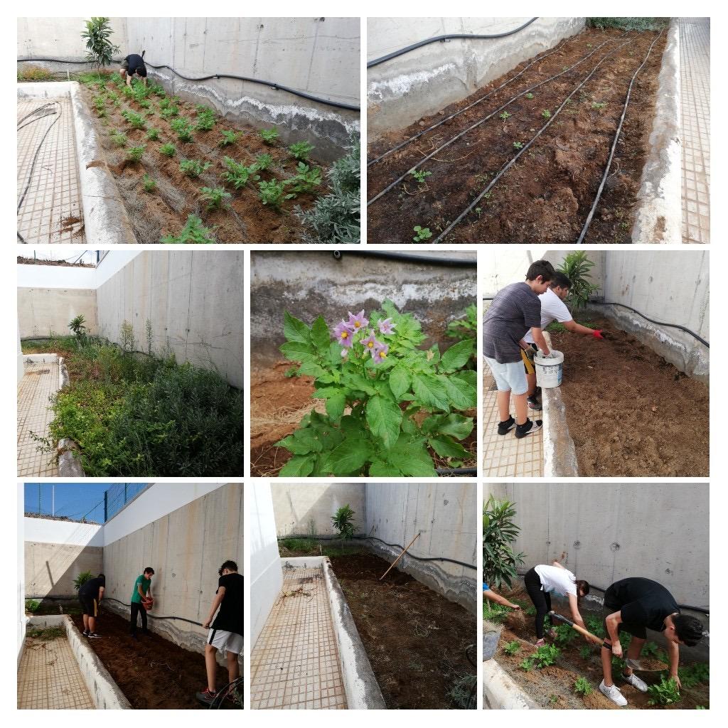 Proyecto de Huerto Escolar Ecológico del IES Las Galletas